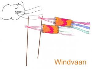 Hoe kun je zelf een windvaan maken ?