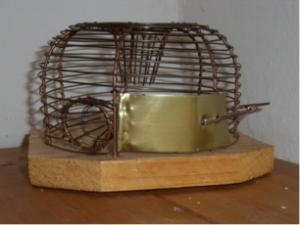 Wat vertelt jou een muizenval?